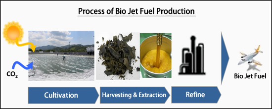 Process of Bio Jet Fuel Production