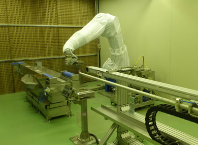 High-efficiency robotized painting system